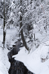 Small stream in a winter forest