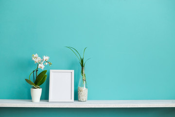 Modern room decoration with Picture frame mockup. White shelf against pastel turquoise wall with spider plant cuttings in water and orchid.