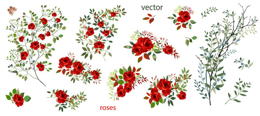 Vector. Wreaths.  Botanical collection of wild and garden plants. Set: leaves, flowers, branches, red roses,floral arrangements, natural elements.