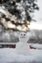 Snowmen in winter scenery