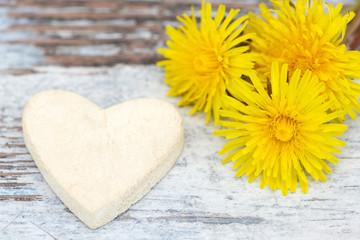 Heart and Dandelion lying on wood