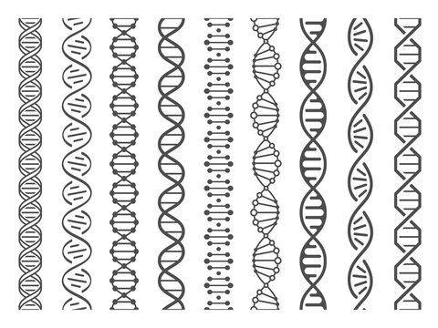 Seamless DNA spiral. Adn helix structure, genomic model and human genetics code pattern vector illustration set