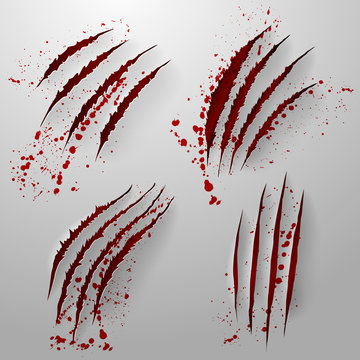 Set of Realistic scratch claws of animal with blood. Hand drawn Animal's claws scratch scrape track. Hole in sheet of paper with torn edges. Vector illustration. Isolated on white background.