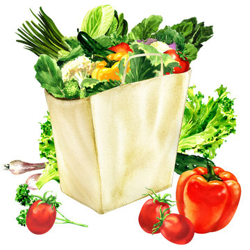 Paper bag with organic healthy food, grocery shopping bag and fresh vegetables, vegetarian concept, isolated, hand drawn watercolor illustration on white background