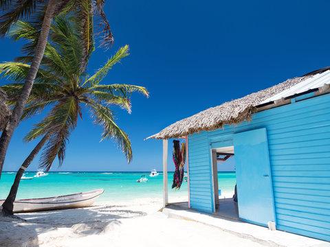 Typical caribbean house near Atlantic ocean beach with coconut palm tree
