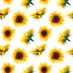 Seamless pattern with sunflowers on white background.