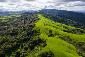 A wet winter in California has caused lush growth in the East Bay hills near San Francisco.