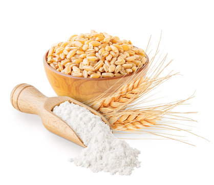Wheat flour grains and ears isolated on white