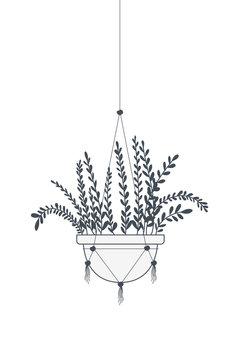 houseplant on macrame hangers icon