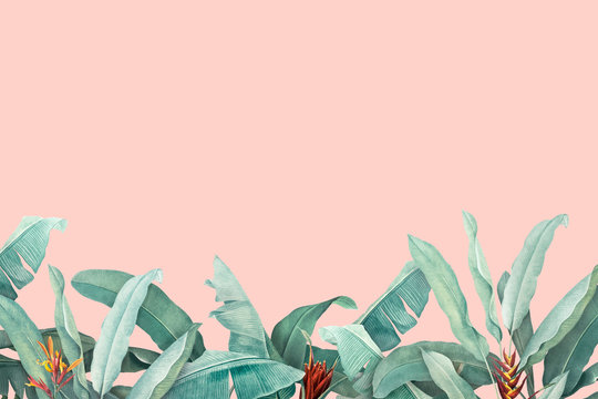 Tropical leaves background