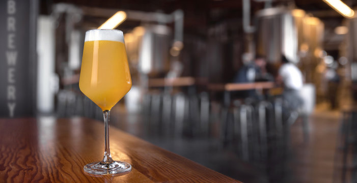 Panoramic view of craft New England IPA beer at local brewery, hazy juicy ale