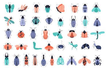Vector cartoon bugs
