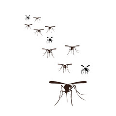 flock of mosquitoes flying, silhouette