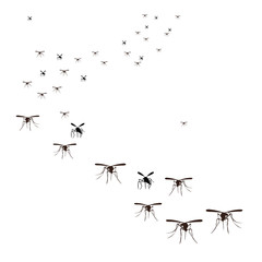 vector, isolated, flock of insects mosquitoes flying, silhouette