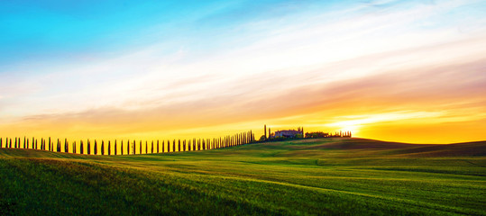 Beautiful magical landscape with a field and a line of cypress in Tuscany, Italy at sunrise Fototapete