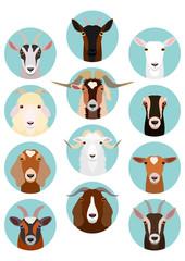 goat heads set