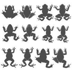 Set of black and white illustrations with tree and river frogs. Isolated vector objects on white background.