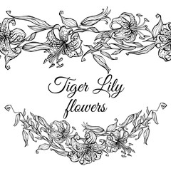 Tiger Lily pattern border and garland of flowers