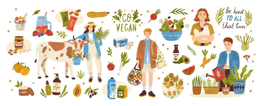 Collection of organic eco vegan products - natural cosmetics, vegetables, fruits, berries, tofu, nut butter, soy and coconut milk. Urban gardening and farming set. Flat cartoon vector illustration.