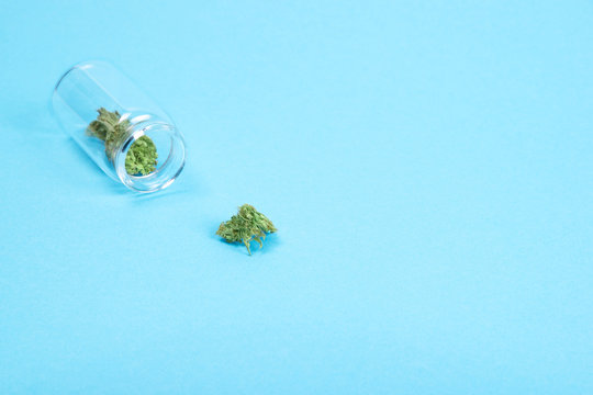 Dried medical cannabis buds in a glass bottle on blue background.