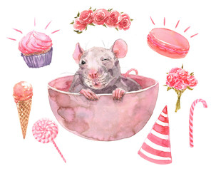 2020 Happy New Picture. Cute Rat Gift Isolated. Greeting watercolor illustration. Symbol of winter holidays. Chinese Zodiac sign. Perfect for calendar and celebration card