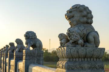 Forbidden City Lions Wall mural