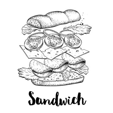Sandwich constructor. Flying ingredients with big chiabatta bun. Hand drawn sketch style vector illustration. Fast and street food drawing. Ham, cheese, tomato, onion and lettuce.