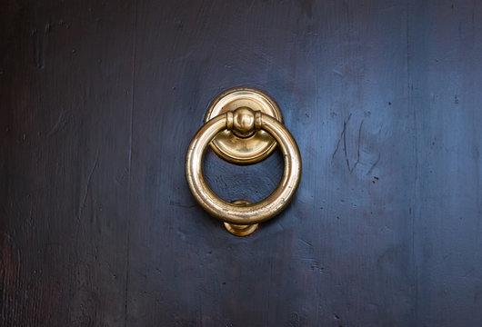 Brass door knocker on dark wood