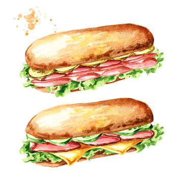 Sub Sandwich with ham and vegetables set. Watercolor hand drawn illustration, isolated on white background