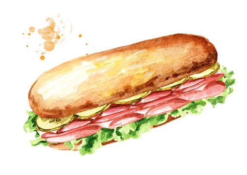 Sub Sandwich with ham and vegetables. Watercolor hand drawn illustration, isolated on white background