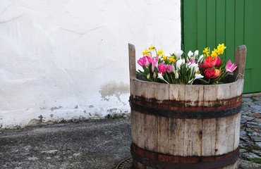 wooden bucket with spring flowers in front of old building