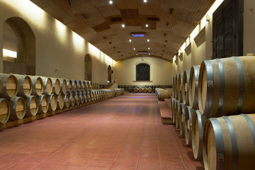Oak Wine Vats, Maipo Valley, Chile
