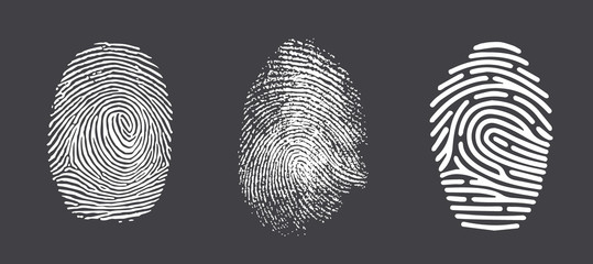 Fingerprint twisted lines sign isolated on white vector illustration in flat design. Black dactylogram personal identity code.