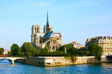 Fototapete - Notre Dame de Paris carhedral on the la seine riverside