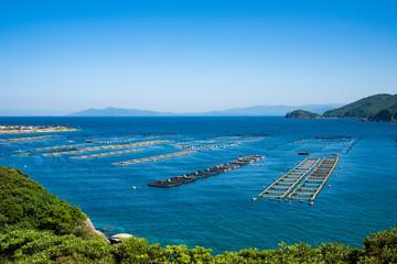 Fototapete - 柏島の養殖生簀