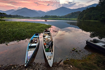 Wall Mural - Beautiful relfections of the lake in Tasik Raban, Perak Malaysia