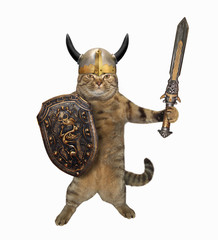 The cat viking in a helmet stands with a sword and a shield. White background. Isolated.