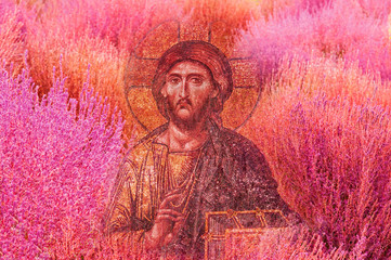 Jesus Christ image on colourful pink tone natural texture background