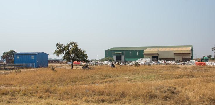 Cotton Farm Zambia Africa