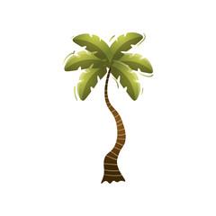 Cute green beach palm tree on isolated island