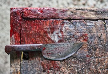 knife with blood on wood floor