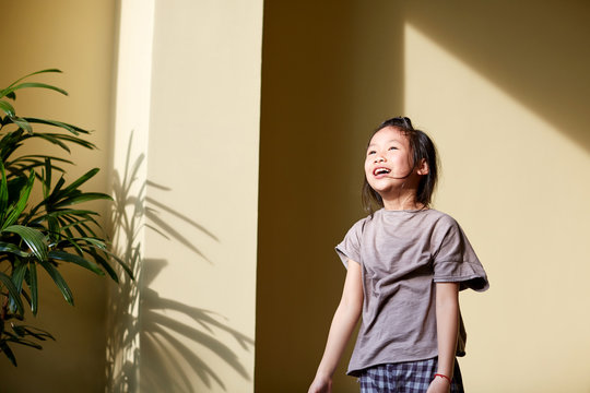 Cute little kid playing with tree shadow on the wall