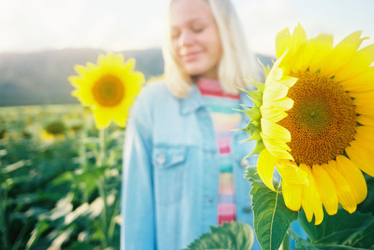 Sunflower field with rainbows and happiness