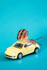 Snail on a car on blue background