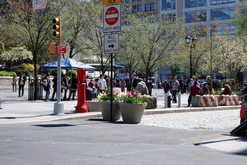 Hanging out in Union Square Park in New York City