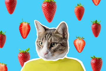 Cat and strawberry collage, pop art concept design. Minimal vibrant summer background.