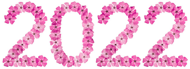 Inscription 2022, from natural pink flowers of periwinkle, isolated on white background