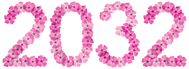 Inscription 2032, from natural pink flowers of periwinkle, isolated on white background