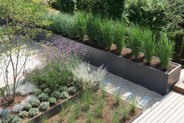 Moderne Gartengestaltung mit Gräsern und Stauden Wall mural
