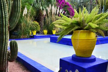 Obraz piękny ogród z egzotycznymi kwiatami - fototapety do salonu